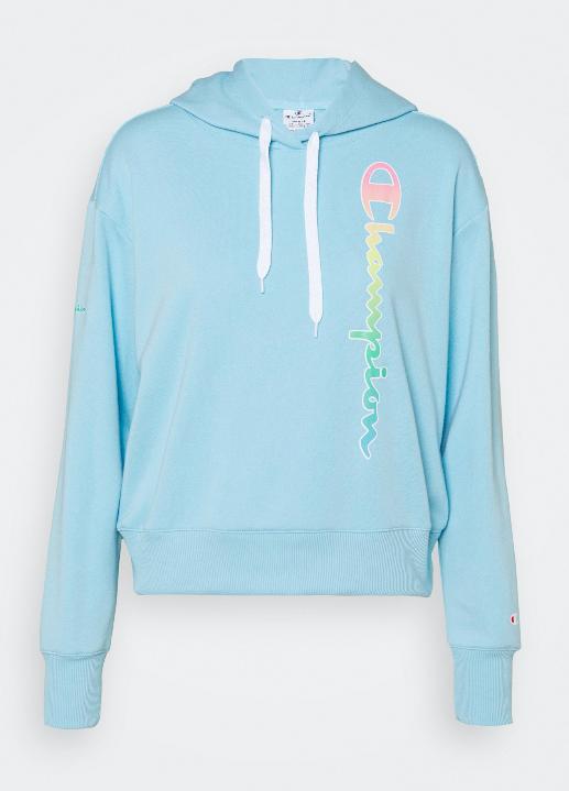 HOODED - Sweatshirt